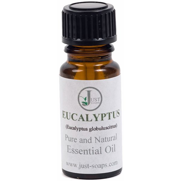 Eucalyptus 100% pure essential oil (10ml)